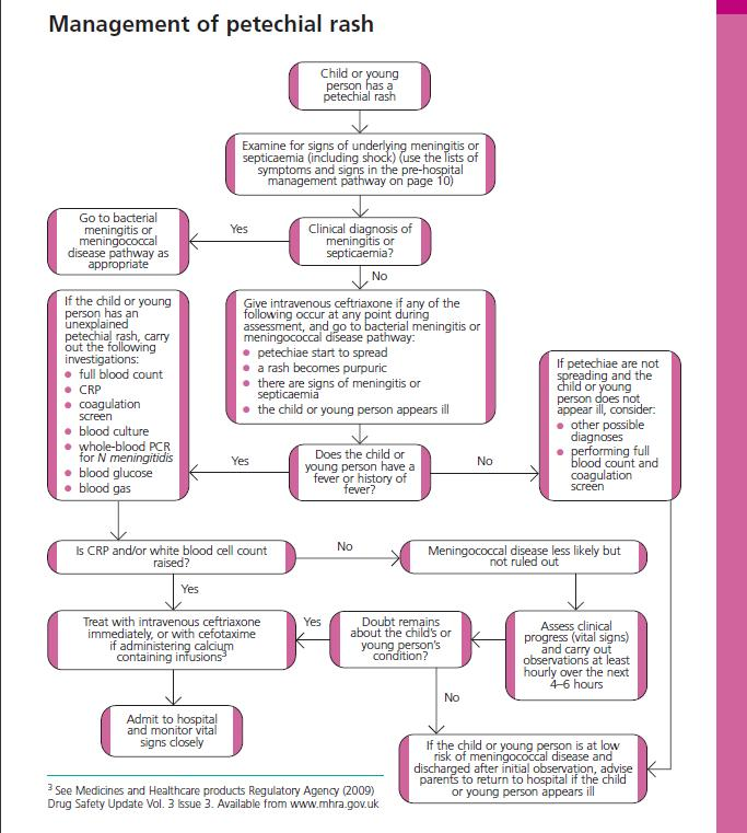 nursing papers research